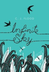 Infinite Sky by C J Flood cover
