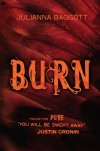 Burn by Julianna Baggott cover