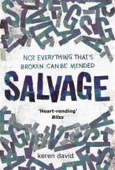 Salvage Keren David cover